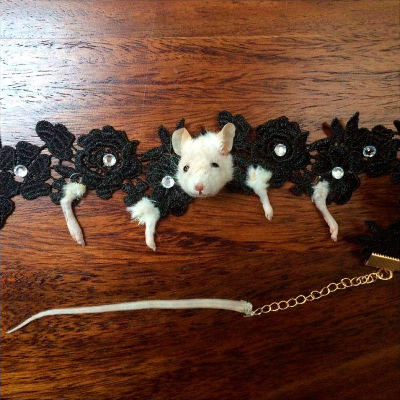 Ожерелье из мышки для любителей таксидермии
