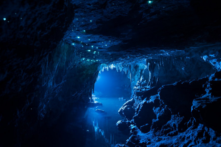 Уникальная пещера в Новой Зеландии, которой 30 миллионов лет