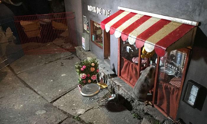 Крошечный мышиный магазинчик в Швеции