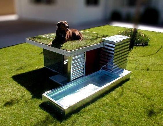 Интересные и необычные домики для кошек и собак