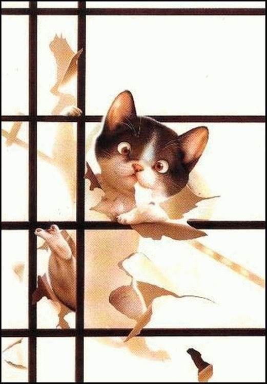 Милые зверушки от Макото Мурамацу