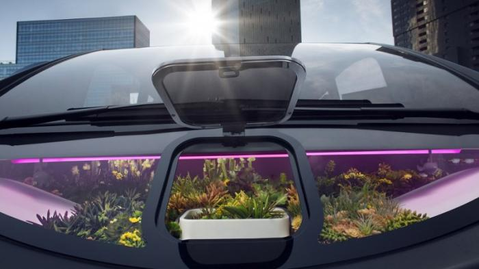 Rinspeed Oasis – автомобиль со встроенной теплицей