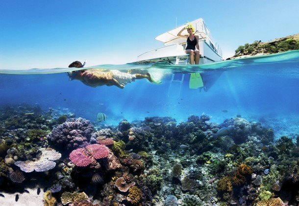 Интересные факты про Большой Барьерный риф