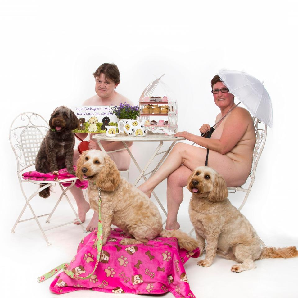 Владелицы собак кокапу разделись для благотворительного календаря