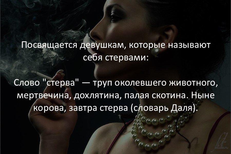 Интересные факты в картинках