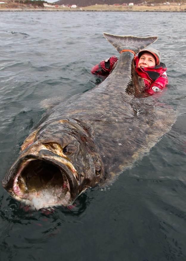 Невероятные и пугающие существа в природе