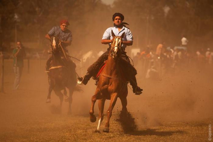 Фестиваль гаучо Fiesta de la Tradicion