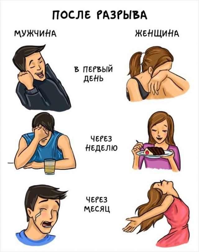 Чем отличаются мужчины и женщины в картинках