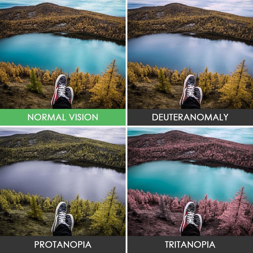 Как выглядит мир глазами дальтоника