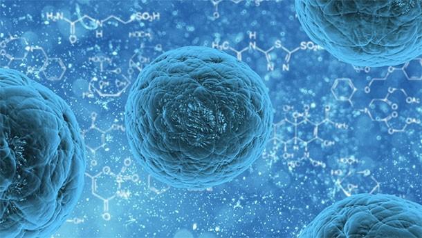15 научных прорывов, которые могут изменить жизнь человечества