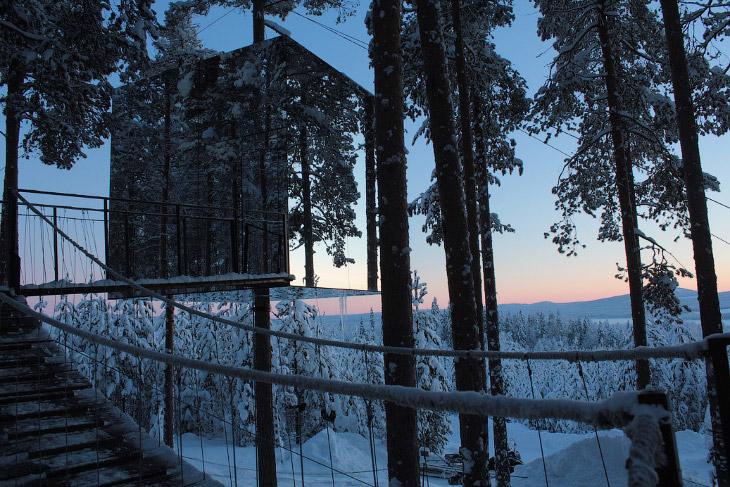 Необычный отель с домами на деревьях