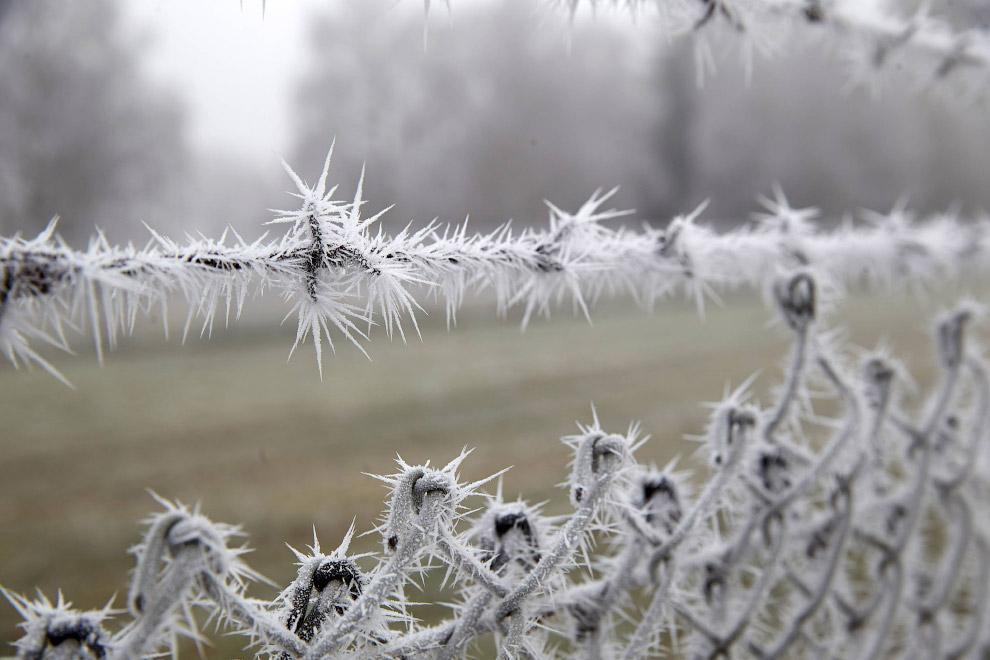Последнему месяцу зимы посвящается