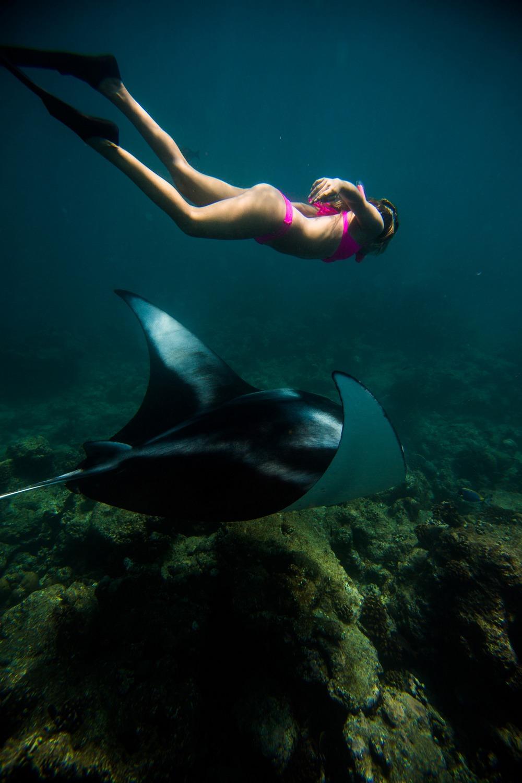 Американка плавает с огромными скатами