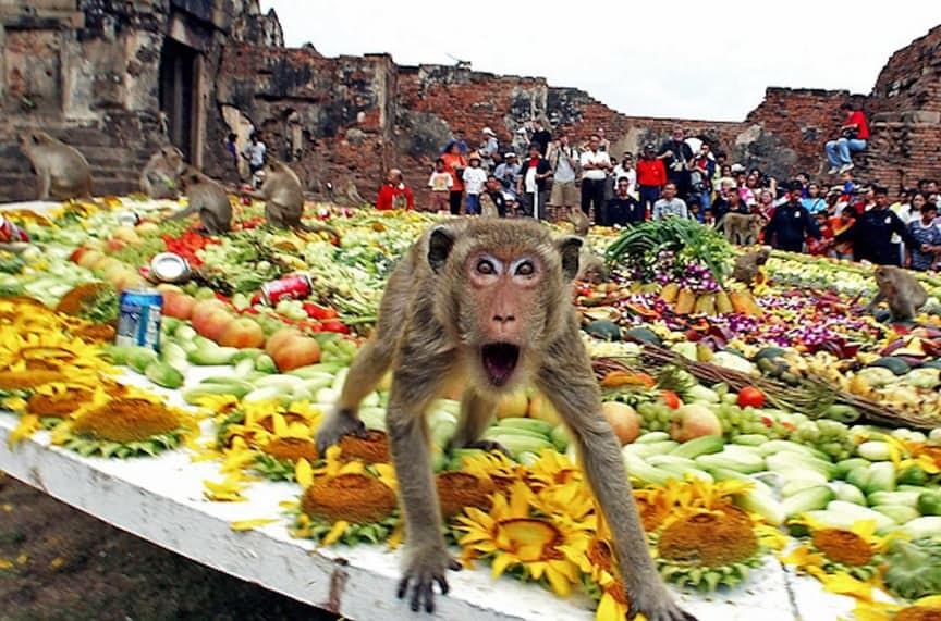15 странных фестивалей, которые можно увидеть только в Азии