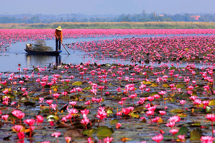 udivitelnaya-krasota-prirody-20 Удивительная красота природы. ФОТО