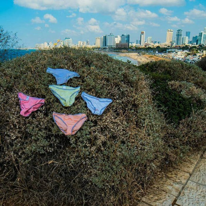 Прикольные фото из Израиля