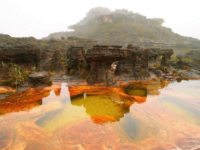 15-vosxititelnyx-ugolkov-planety-gde-priroda-chuvstvuet-sebya-v-bezopasnosti-4 15 восхитительных уголков планеты, где природа чувствует себя в безопасности. ФОТО