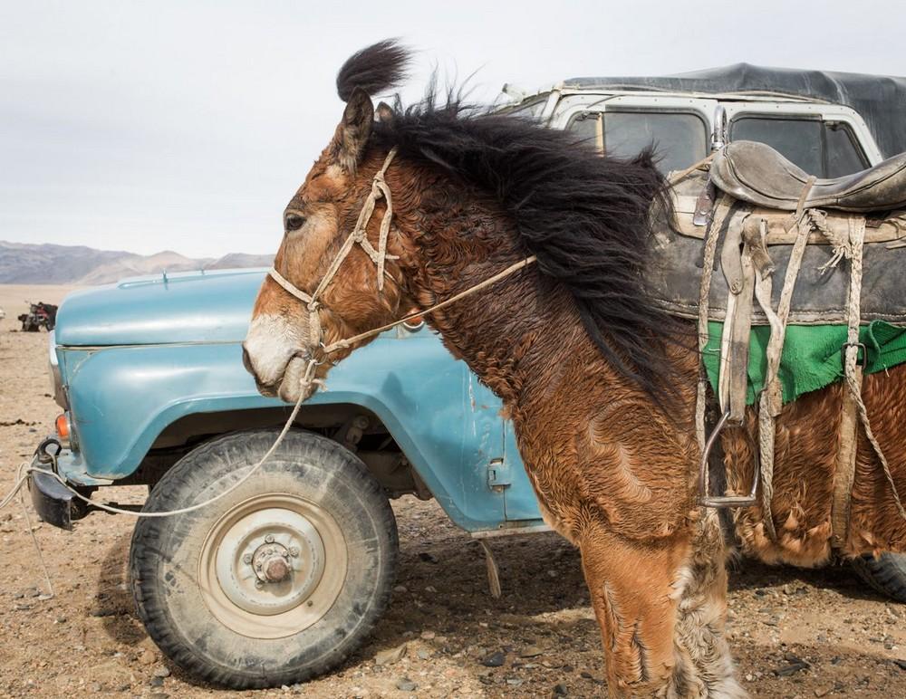 Западная Монголия в фотопроекте австралийского фотографа
