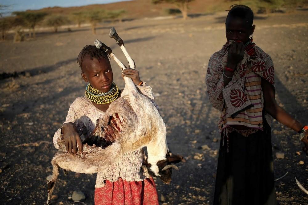 Кенийцы жгут трупы животных, чтобы избежать эпидемии