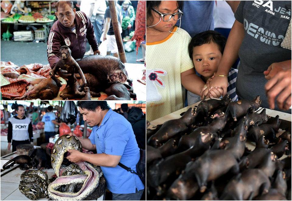 Шокирующие товары на Индонезийском рынке продуктов