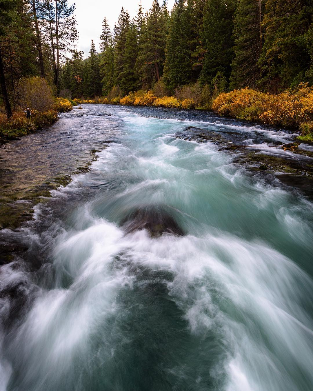 Красота природы на снимках Росса Липсона