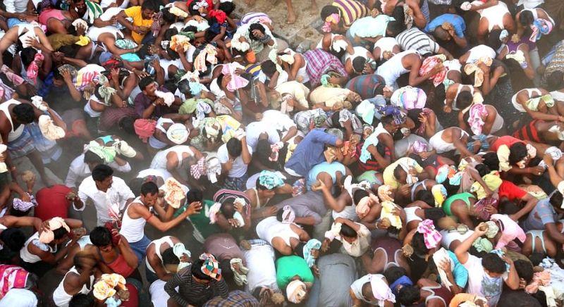 Суровые бои коровьим навозом в Индии
