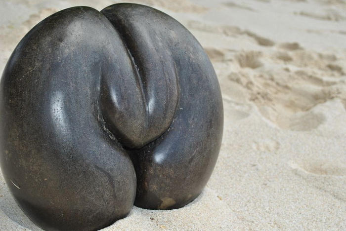 Коко-де-мер - самый необычный кокос