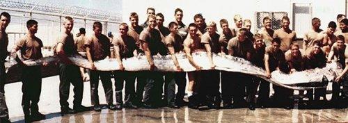Жуткие существа, которые когда-либо попадались морякам и рыбакам