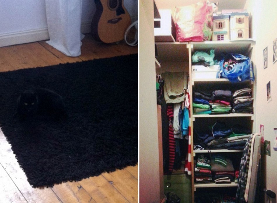 Найдите спрятавшегося кота
