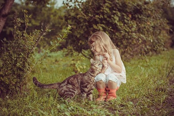 Когда детки ладят с котами