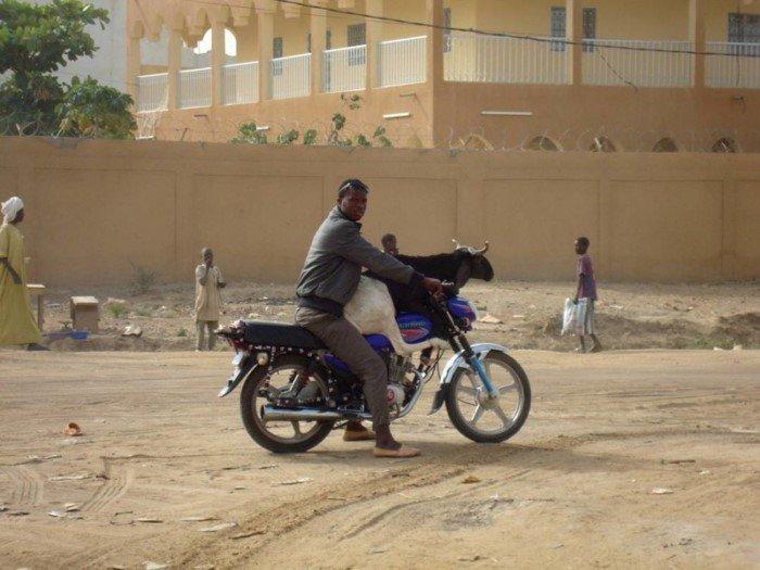 Будни жителей Н'Джамены, одной из самых быстрорастущих столиц планеты
