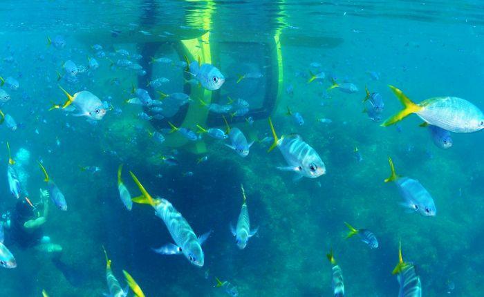 Необычный катамаран с подводной капсулой