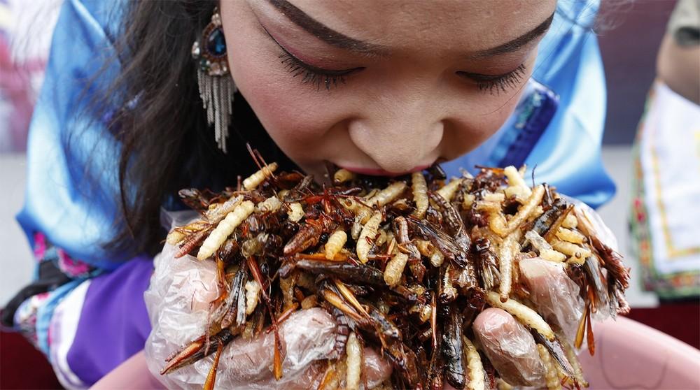 Конкурс по поеданию насекомых в Китае