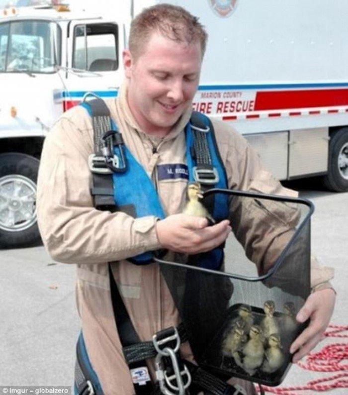 Они рисковали жизнью, чтобы спасти животных