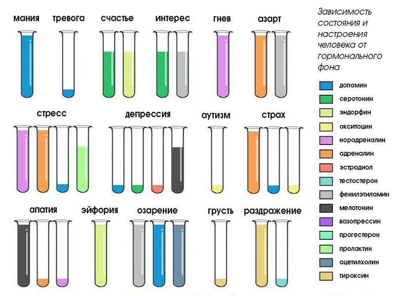 Элементарная химия человеческих чувств
