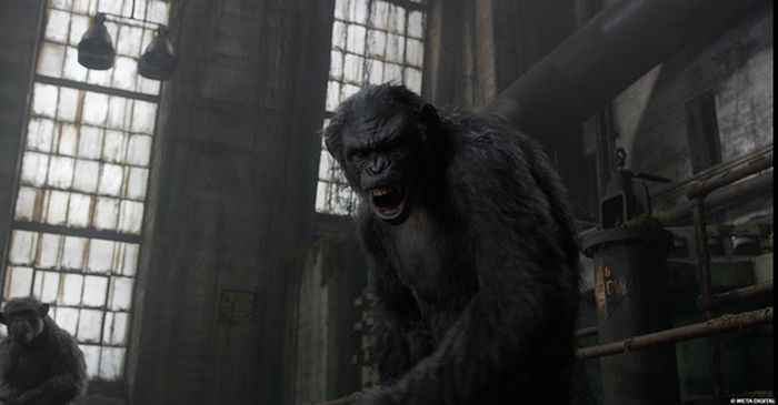 Компьютерная графика в фильме Планета обезьян: Революция