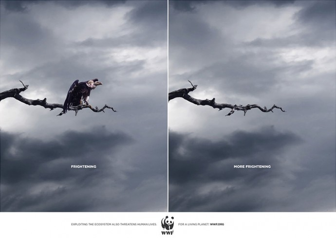 Мощная социальная реклама о животных