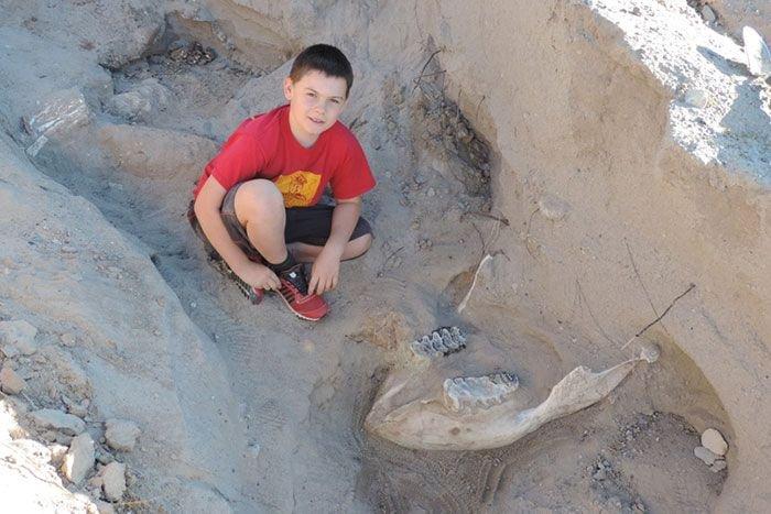10-летний мальчик сделал необычную находку