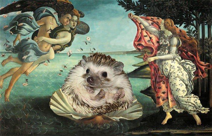 Ежиха становится героиней знаменитых картин