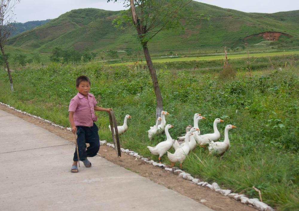 Дороги в Северной Корее