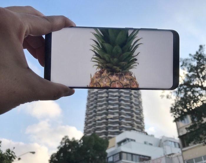 картинки на телефон природа август