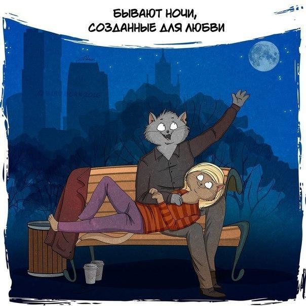 Ночь - прекрасное время суток и коты