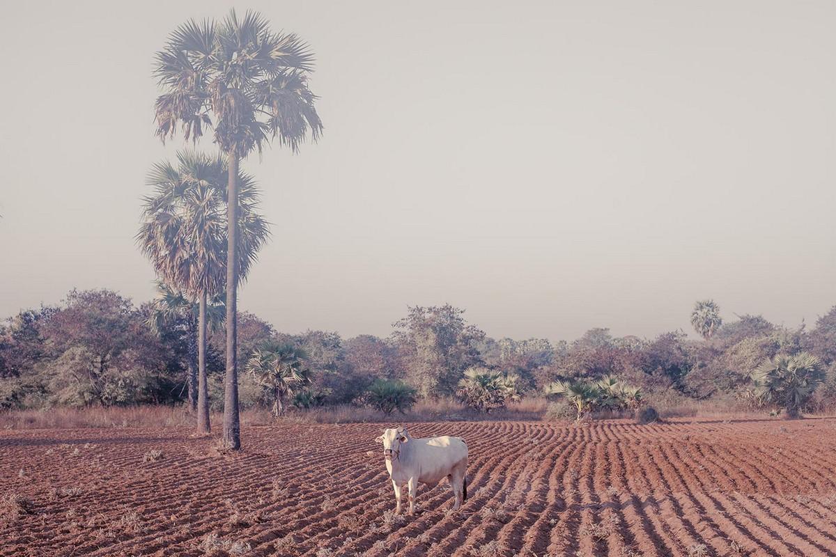 Пейзажи древней столицы Мьянмы