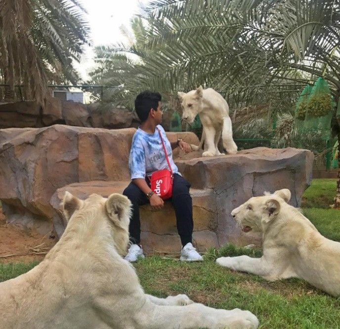 Красивая жизнь подростка Рашида Белхаса из Дубая