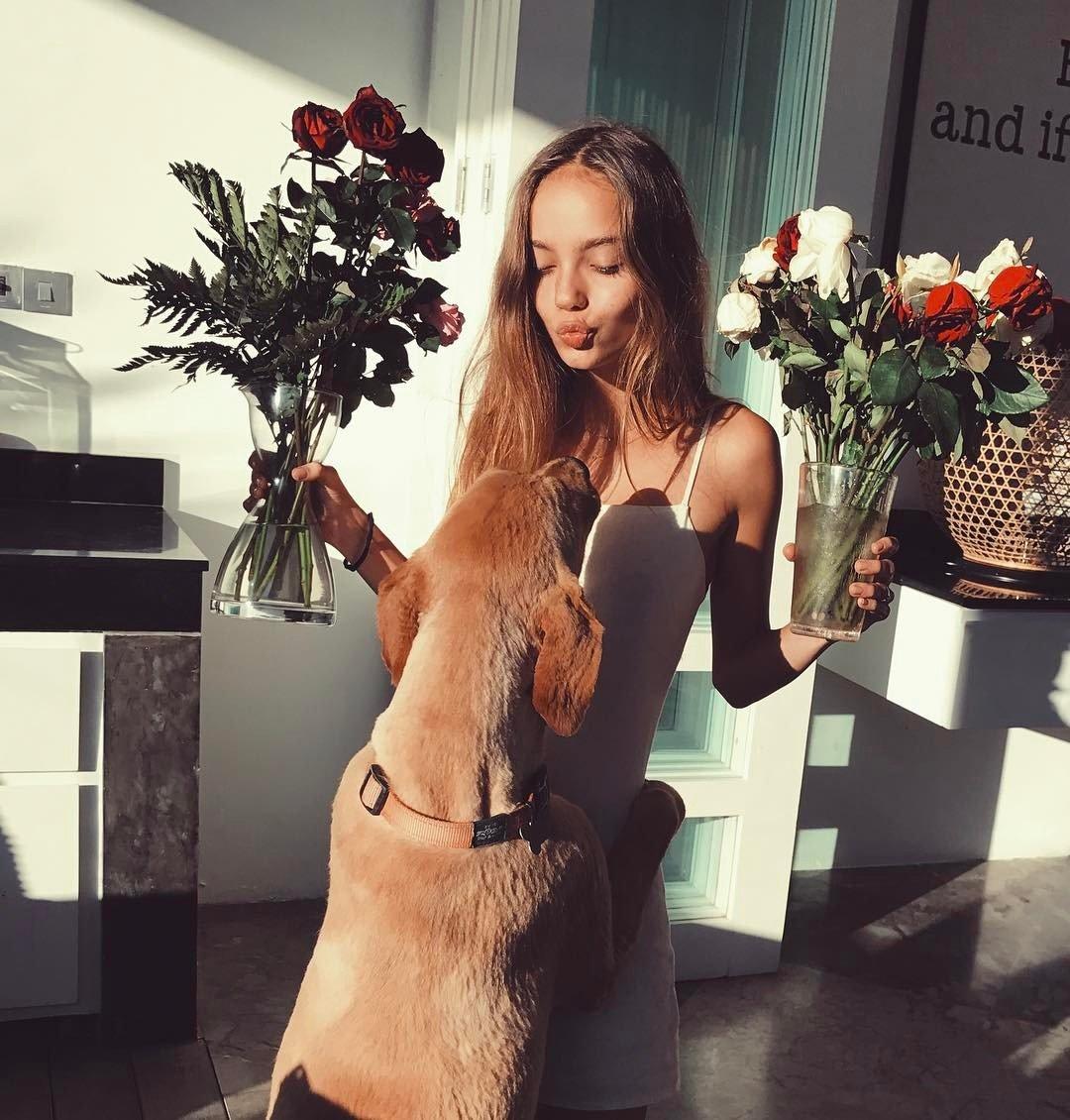 Собаки и их красивые хозяйки
