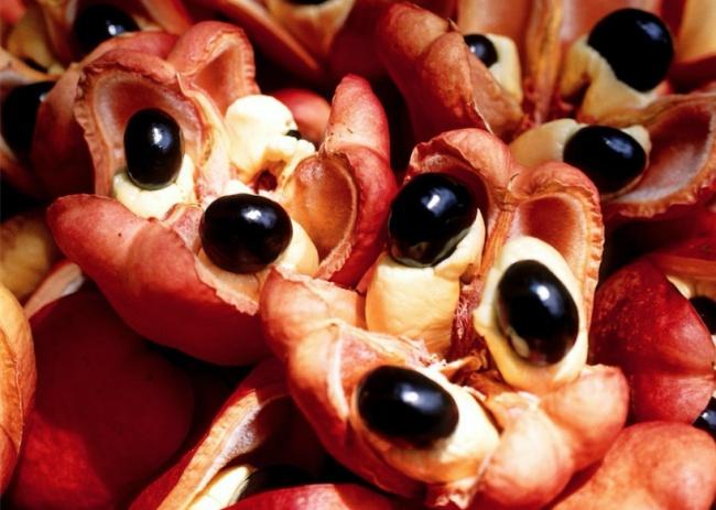 Опасные блюда, которые люди продолжают есть