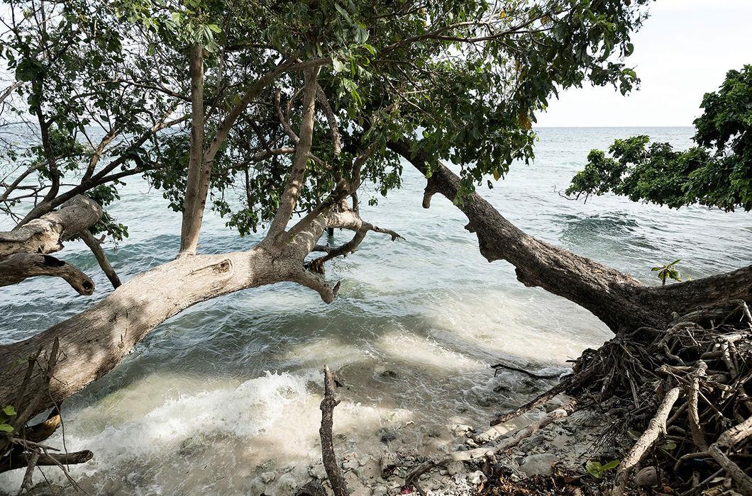 Соломоны: будни райского уголка