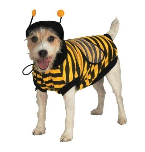 Костюмы для собак на Хэллоуин