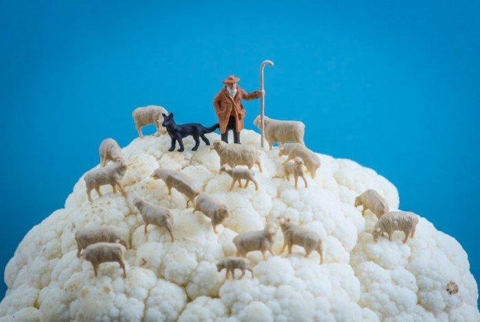 Крошечные миры от Петера Чаквари