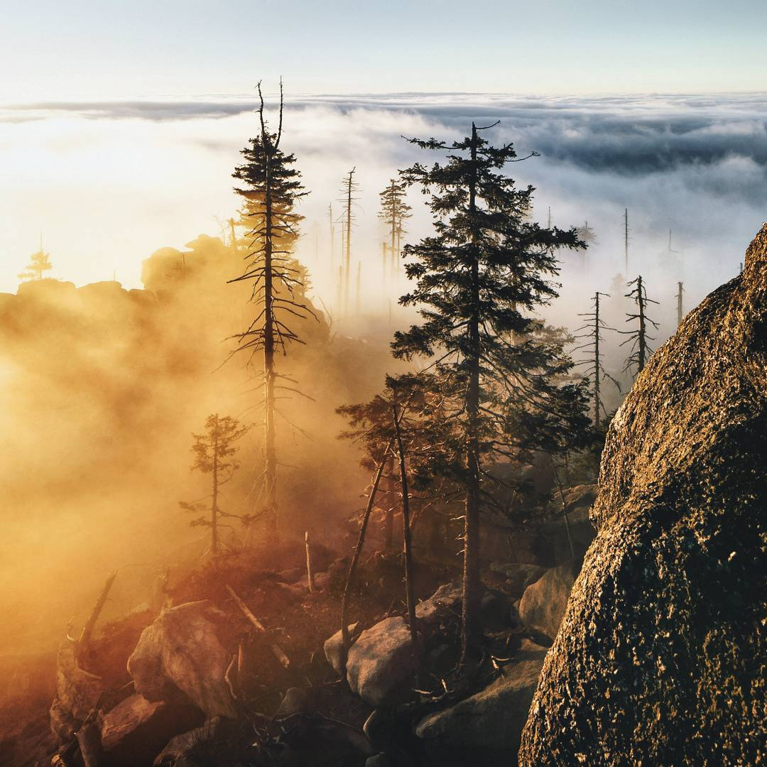 Снимки природы от фотографа с дальтонизмом Килиана Шонбергера
